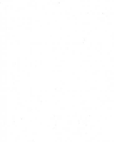 белый альпийский ST9