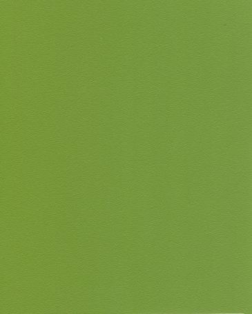 зеленый киви U626 ST9