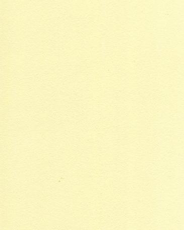 ванильный желтый U108 ST9